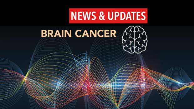 Brain News Updates