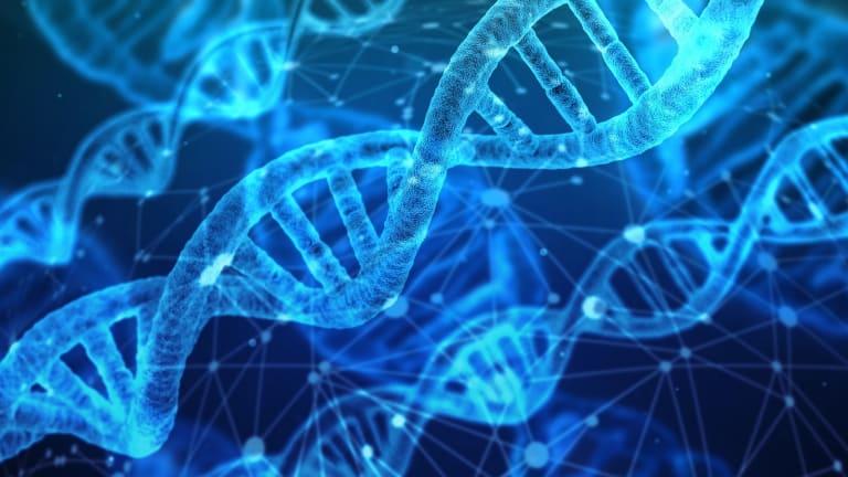 Esophageal Cancer Survival Improved Using Precision Cancer Medicines