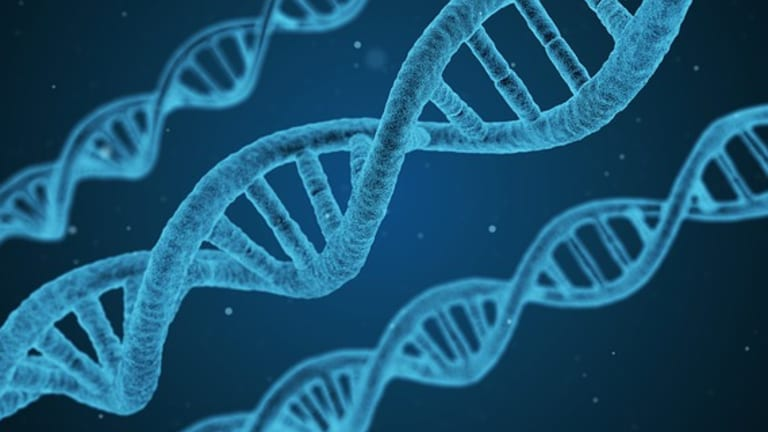 Genetic Testing Overview
