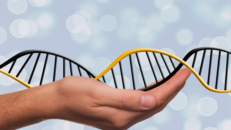 Unraveling a Genetic Legacy