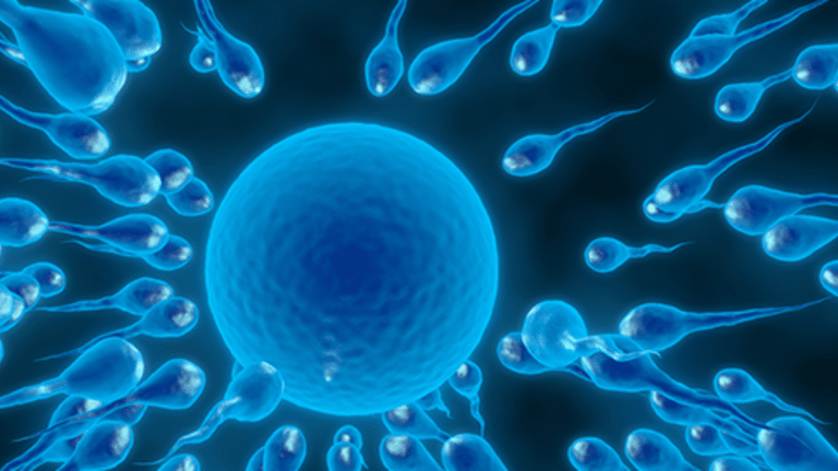 Side Effects of Cancer Treatment Reproduction, Infertility and Sexuality