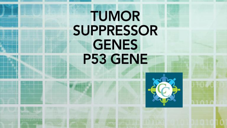 Targeting p53 Tumor Suppressor Genes in Cancer