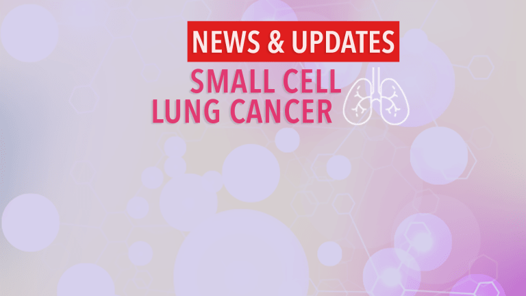 Checkpoint Inhibitor - Chemotherapy for Treatment of Small Cell Lung Cancer