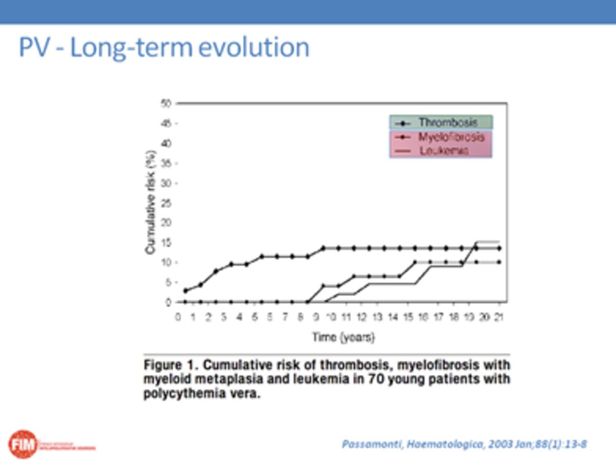 PV Long Term Evolution